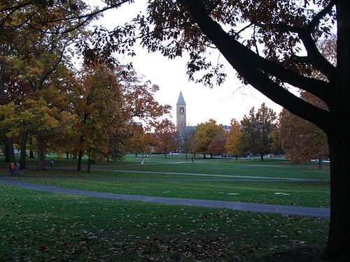Cornell Arts Quad looking north to south.  The tipped plane displays the lawn more prominently to those walking along the west side and looking east, as an open box of candy looks more appetizing when held at a slant to display its contents better.